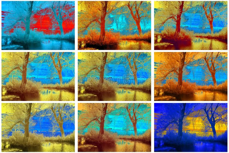 Infrared collection of trees. Near a pond, varied on a computer royalty free stock images