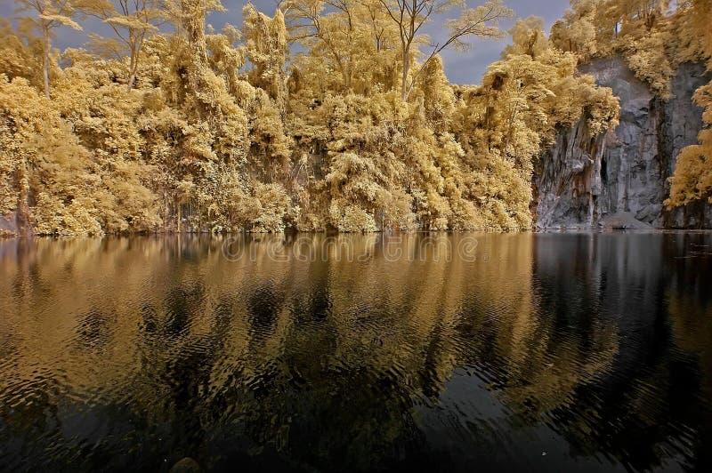 Infrared fotografii â jezioro, skała i drzewo w normie,