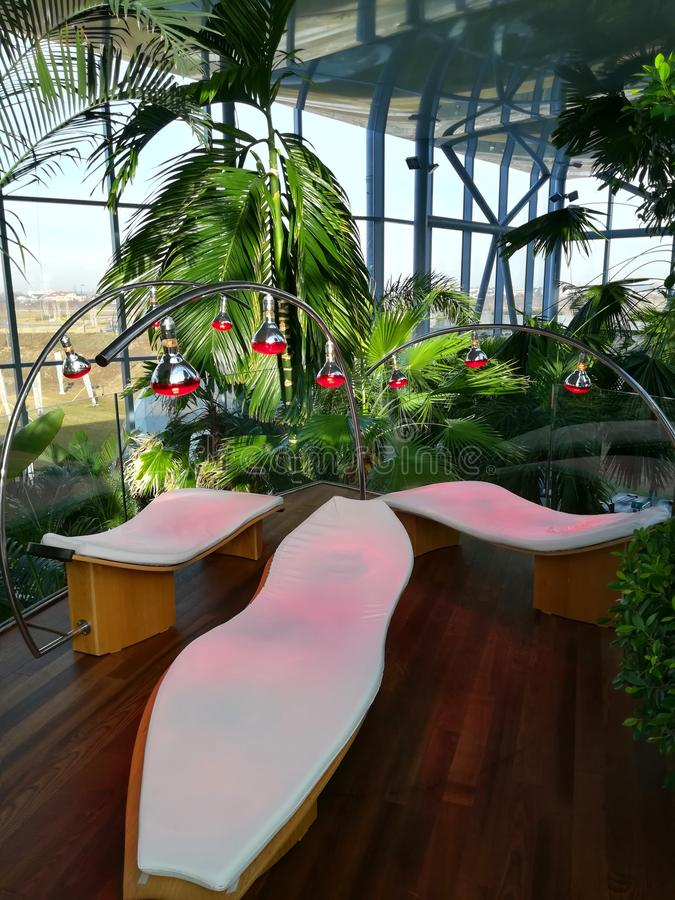 Infrared light therapy and palm trees. Infrared light therapy above the sunbeds and tropical palm trees stock images