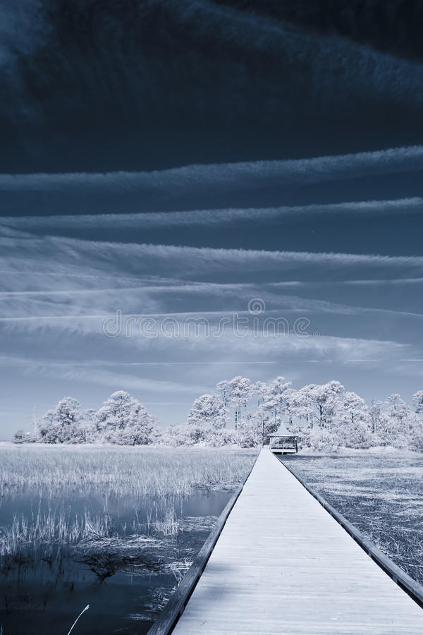 Free Infrared Path Over Water Stock Photo - 29877980