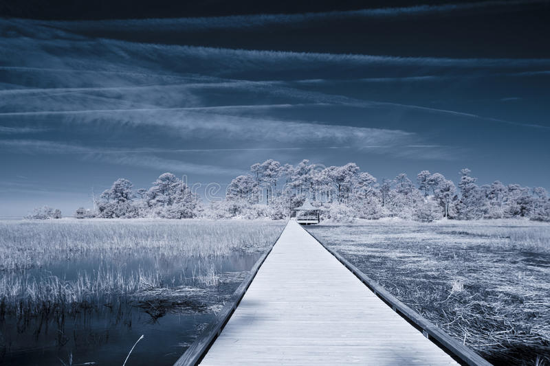 Download Infrared Shot Of Path Over Water Stock Image - Image: 29735047
