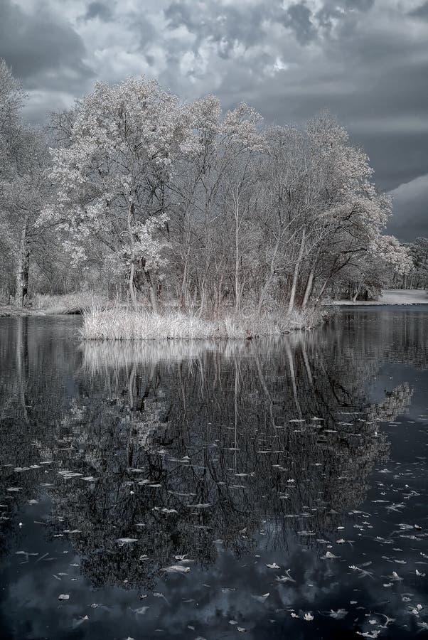 Infrared van Duotone stock fotografie