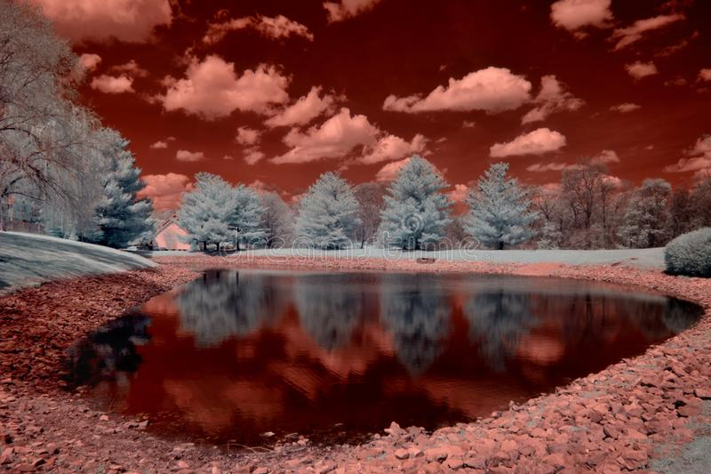 Infraredred picture of a pond royalty free stock photos