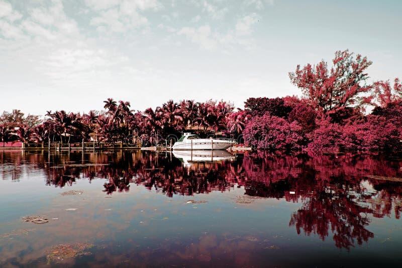 Infrarode fotografie van een rivier en een motorboot en een landschap in het Strand van Miami, Florida, de V.S. royalty-vrije stock foto