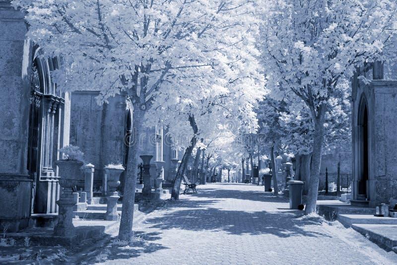 Infrarode oude begraafplaatsstraat royalty-vrije stock foto