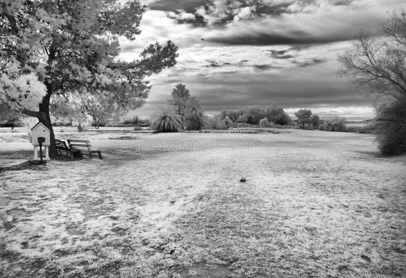 Infrarood beeld, golfbaan royalty-vrije stock foto