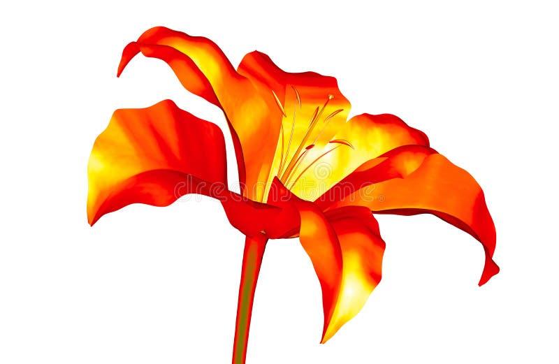 Infrarood die beeld van een bloem op wit, de 3d illustratie van Amaryllis wordt geïsoleerd stock illustratie
