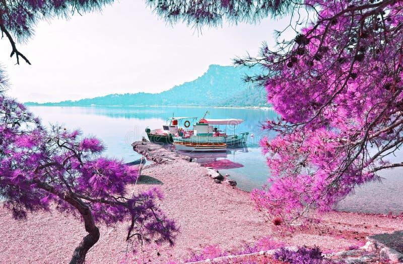 Infrarood landschap van het meer van Heraion - Vouliagmeni Loutraki Griekenland stock foto