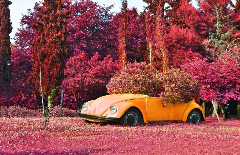Infrarotlandschaft von Aigaleo-Park Griechenland - purpurrote Naturlandschaft lizenzfreies stockfoto