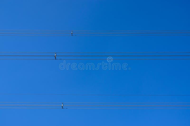 Infrastruktura, linie energetyczne z spacers przeciw jaskrawemu niebieskiemu niebu obrazy stock