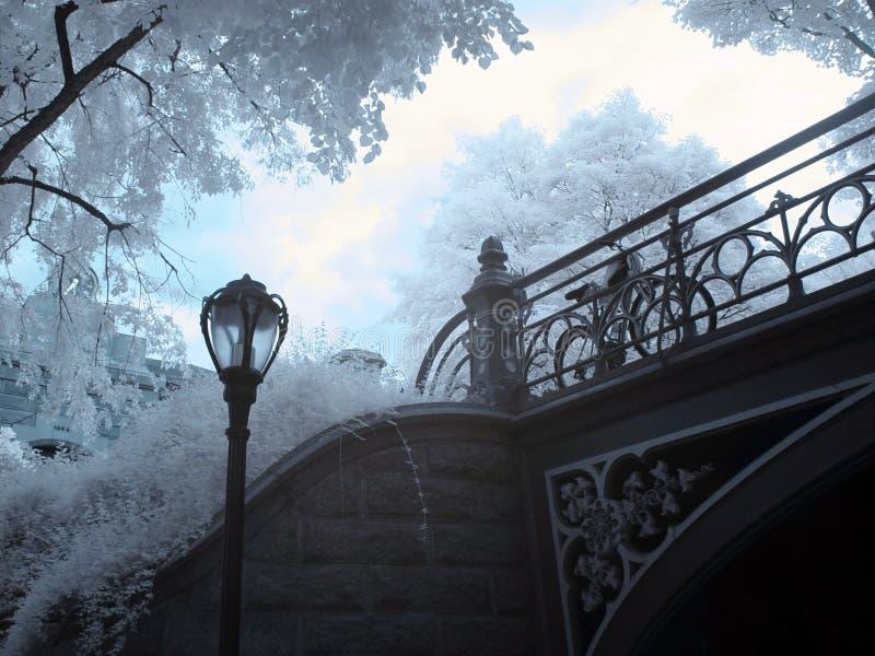 Infravermelho de Central Park fotografia de stock