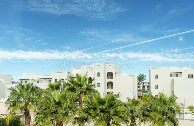 Infrount пальм foreside гостиницы с голубым небом и комами над им стоковая фотография rf