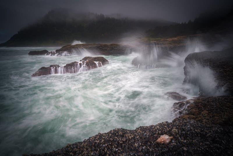 Infuriarsi ondeggia sulla costa dell'Oregon immagine stock