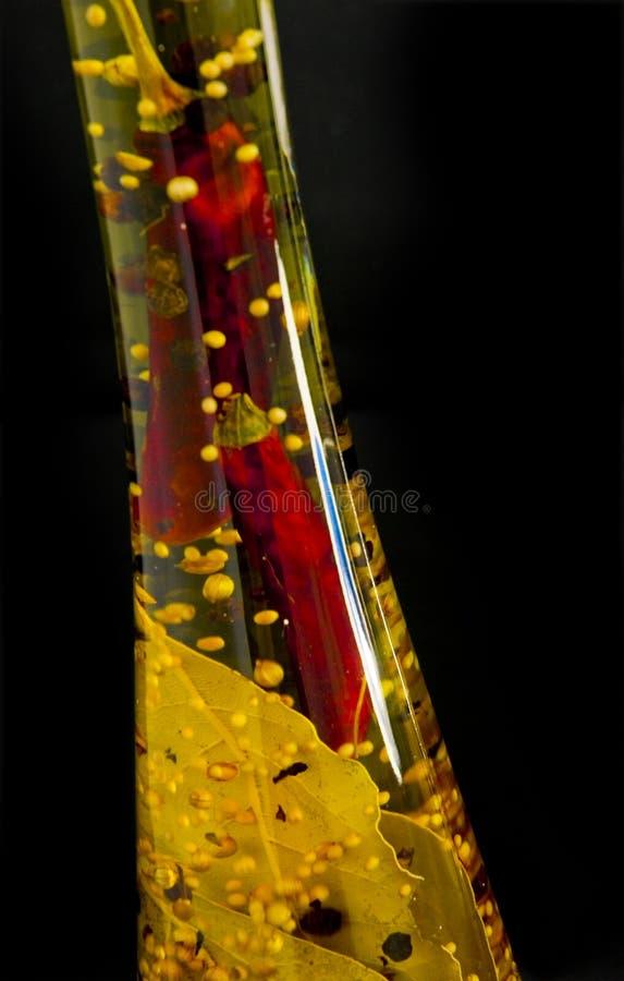 infused olja royaltyfri fotografi