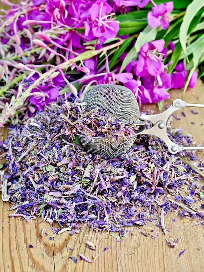 Infusión de hierbas del laurel de San Antonio seco y fresco con un tamiz fotos de archivo