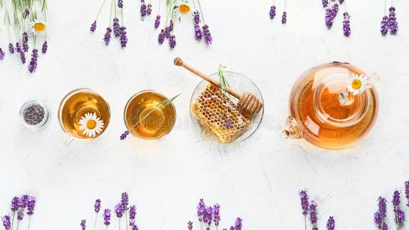 Infusión de hierbas sana con las flores de la lavanda y de la manzanilla fotografía de archivo libre de regalías