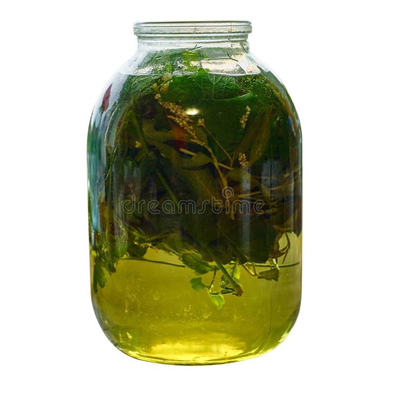 Infusión medicinal de hojas y de hierbas recientemente escogidas en el tarro de cristal fotos de archivo