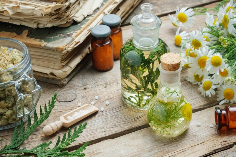 Infusion bottles, Chamomile flowers and Thuja plant, bottles of homeopathic globules and old books royalty free stock images