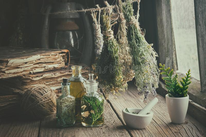 Infusion bottles, old books, mortar and hanging bunches of dry medicinal herbs. Herbal medicine. royalty free stock image