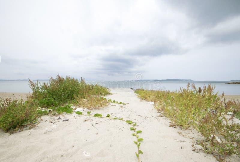 Ingång av stranden av Okinawa royaltyfri foto