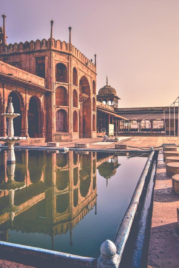 ingång Taj-ul-Masajid i Bhopal Indien royaltyfria foton