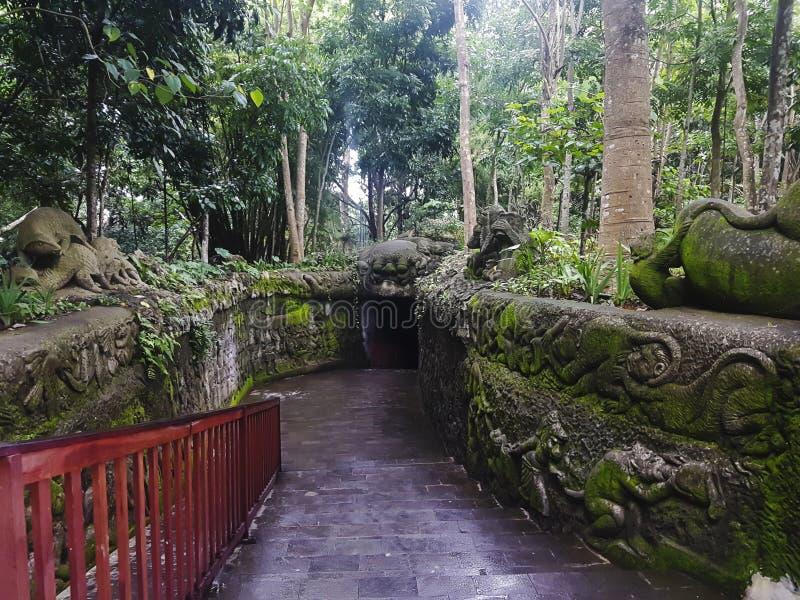 Ingång till apaskogen, Ubud, Bali, Indonesien royaltyfria foton