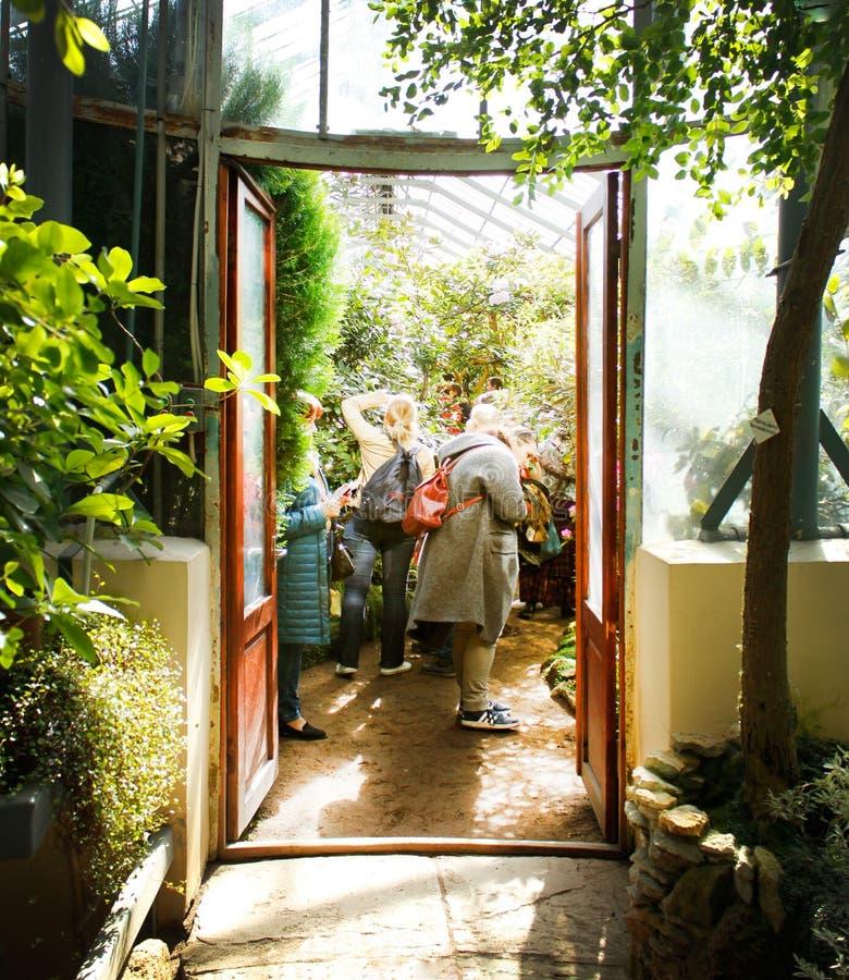 Ingång till en av drivhusen av botaniska trädgården av St Petersburg fotografering för bildbyråer