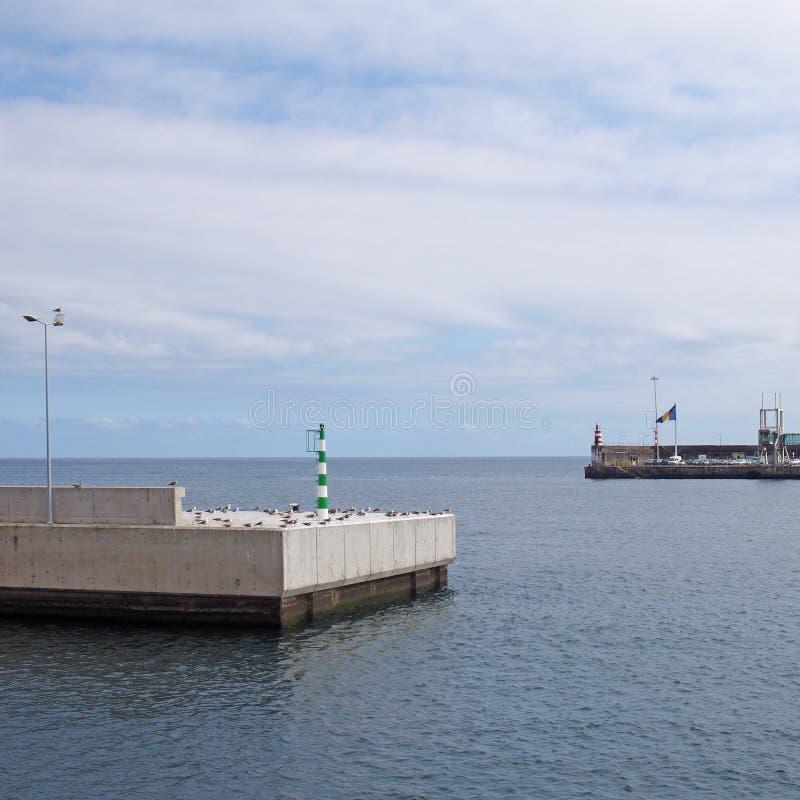 ing?ngen till den funchal hamnen i madeira med s?kerhetsljus och flaggor p? slutet av de konkreta pirna med det bl?a lugna havet  arkivfoton