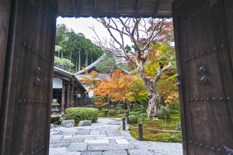 Ingångsdörr till den härliga trädgården för japansk lönn under höst på den Enkoji templet i Kyoto, Japan royaltyfria bilder
