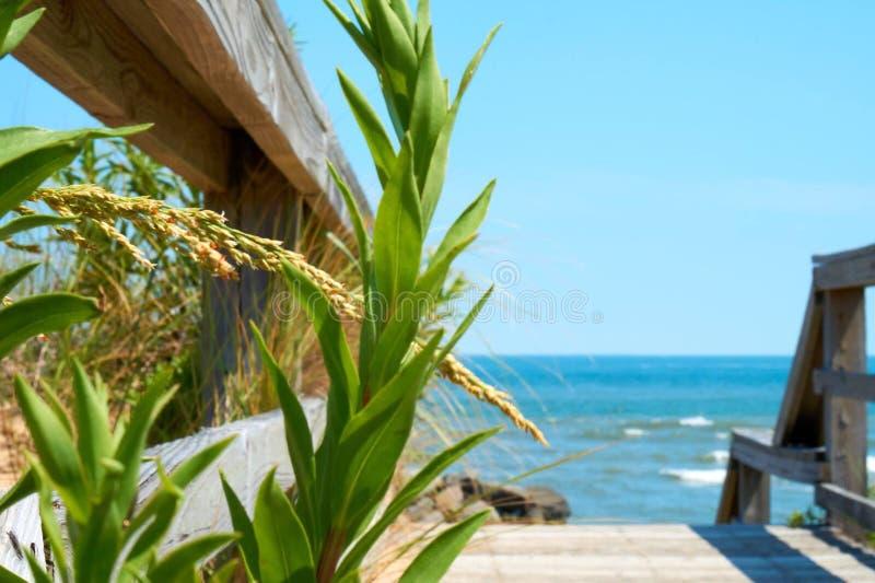 Ingang aan het strand royalty-vrije stock fotografie