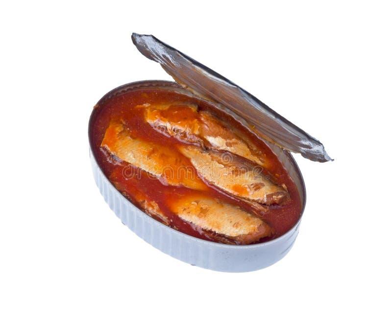 Ingeblikte sardines in tomatensaus royalty-vrije stock foto
