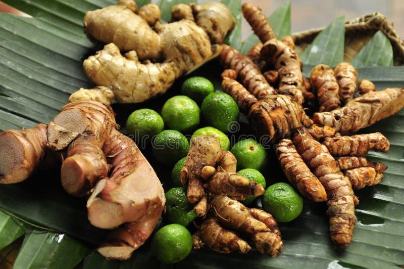 Ingefäran rotar, gurkmeja- och limefruktingredienser för Bali matlagning royaltyfri foto