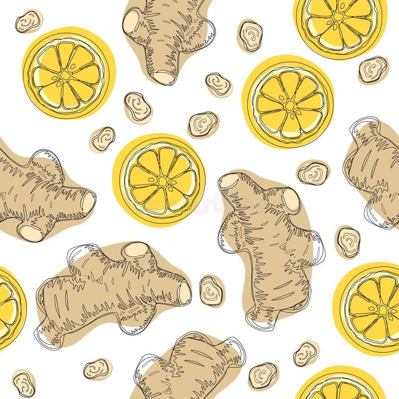 Ingefäran rotar med citronen Handattraktioningrediens för värmete Den hela och skivade ingefäran rotar med citronen seamless vekt royaltyfri illustrationer