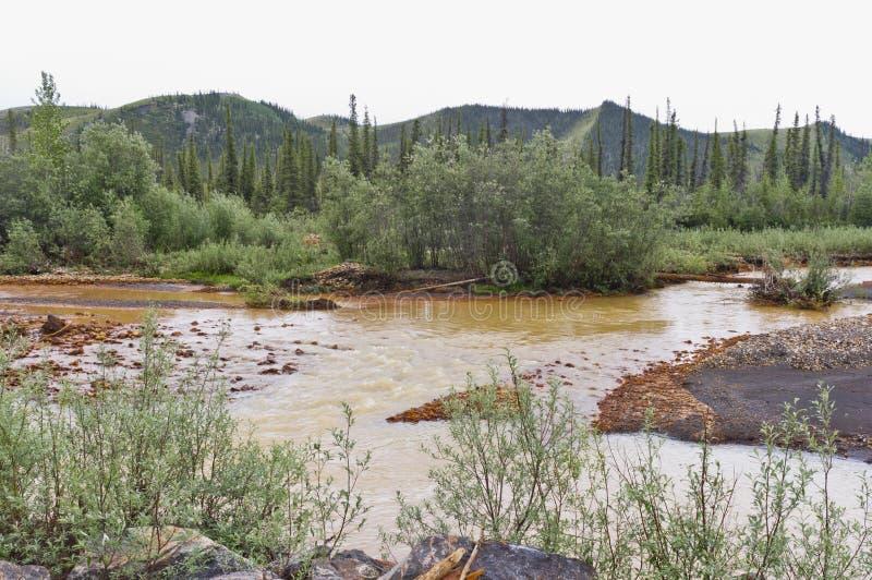 Ingegnere Creek, il Yukon, Canada fotografia stock libera da diritti