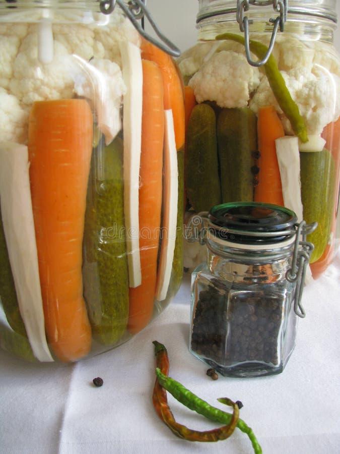 Ingelegde veggetables heet royalty-vrije stock foto