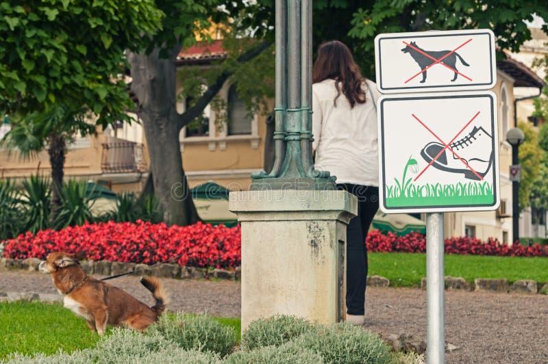 Ingen hundkapplöpning lät undertecknar parkerar in och den kvinnliga ägaren med hennes hund som peeing på gräsmatta royaltyfria foton