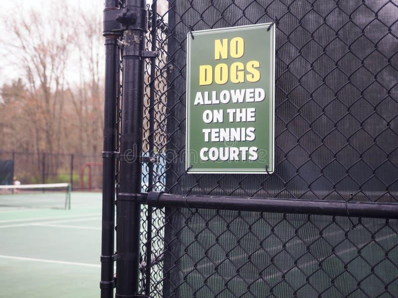 INGEN HUNDKAPPLÖPNING undertecknar tennisbanan royaltyfria foton