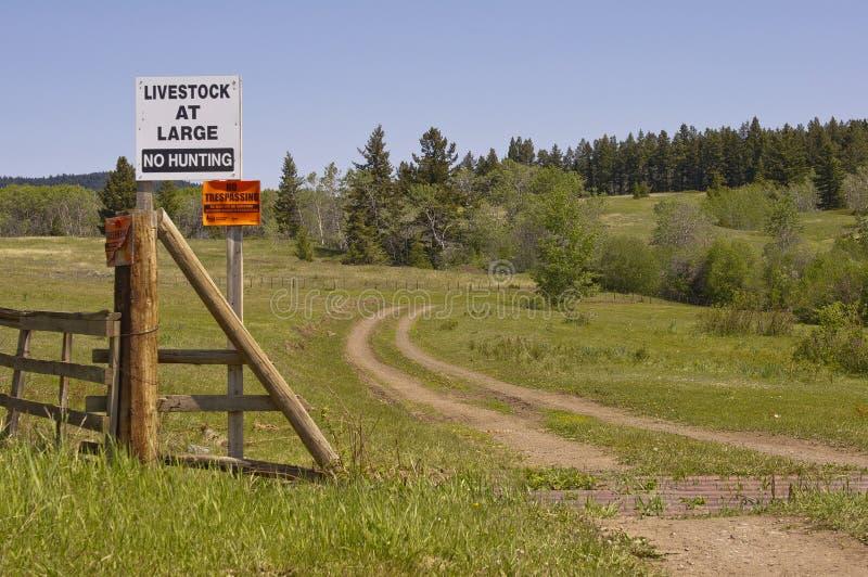 Ingen jakt och inget inkräkta tecken arkivbilder