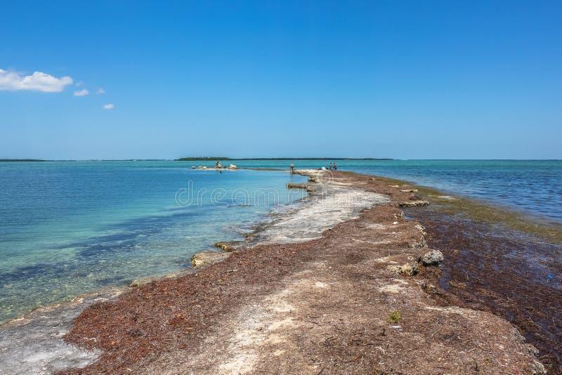 Ingen kända nyckel- Florida arkivbilder