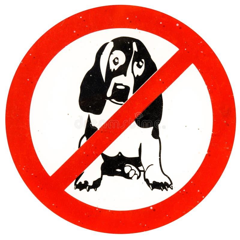 Ingen tillåten hundkapplöpning royaltyfri fotografi