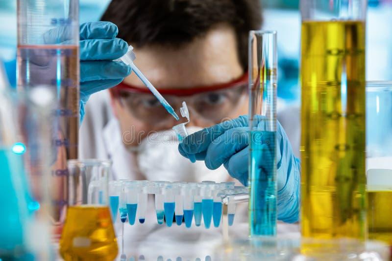 Ingeniero químico que mide con una pipeta muestras en la polimerización en cadena del tubo en el laboratorio de investigación foto de archivo
