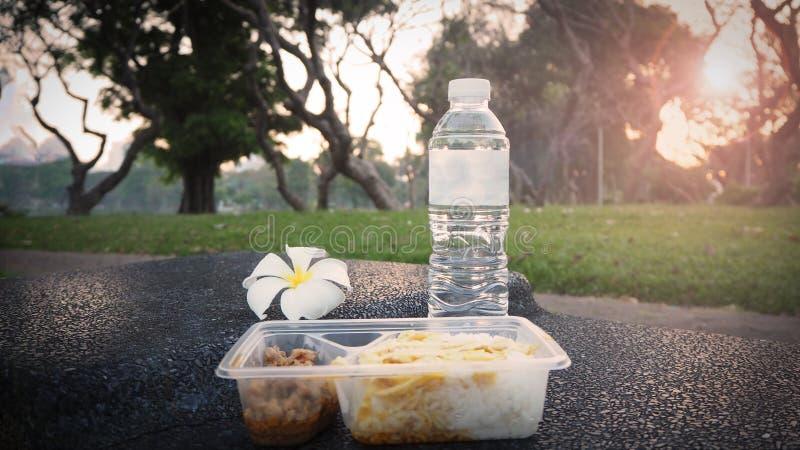 Ingepakte doos voor ontbijt of lunchmaaltijd De gemakkelijke rijstdoos met water klaar voor eet in park stock afbeelding