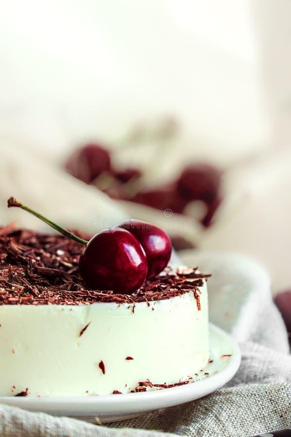 Inget baka den ljusa kakan för vaniljbavaroismousse med körsbär och mörk choklad överst royaltyfri fotografi