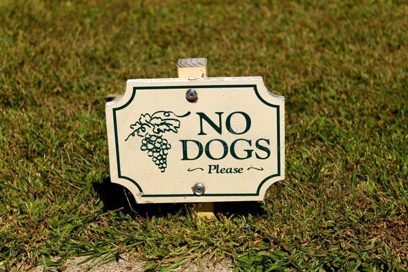 Inget hundtecken royaltyfri bild