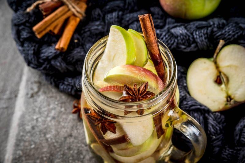 Ingett äpplevatten med kryddor royaltyfria foton