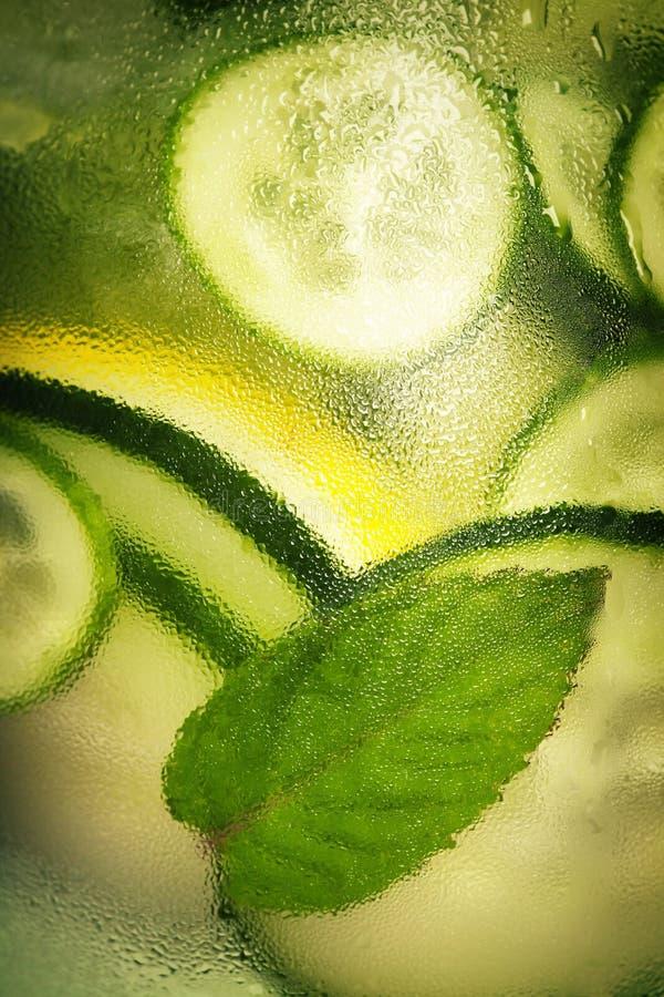 Ingett vatten med gurkan, citronen, limefrukt och mintkaramellen royaltyfri foto