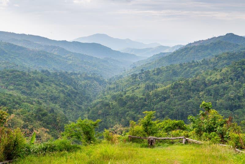 Ingewikkeldheid van berg en van de van het valleilandschap en boom diversiteit van bosmening van het bekijken van platform royalty-vrije stock fotografie