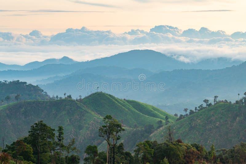 Ingewikkeldheid van van de berglandschap en boom diversiteit van bos met mooie lage wolken op bovenkant royalty-vrije stock foto