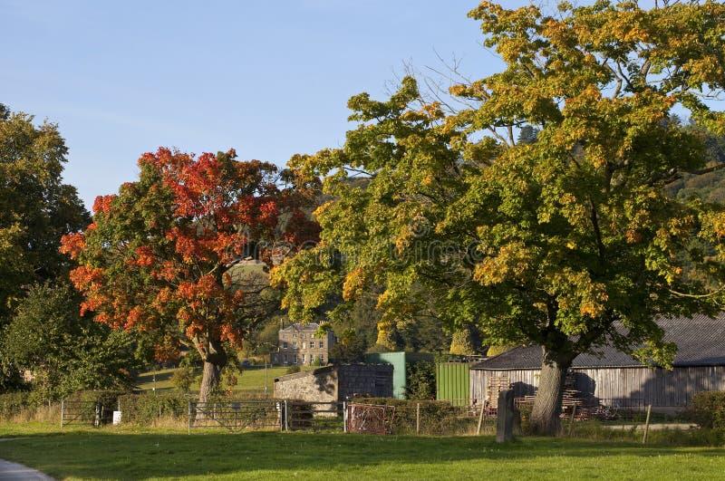 Inglés Countyside fotografía de archivo