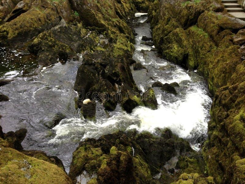 Ingleton siklawy strumień zdjęcia stock